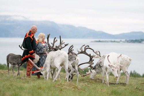 sami-reindeer_traditional_costume-1